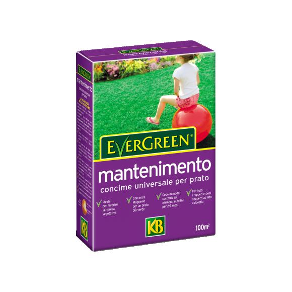Concimi - Evergreen_Mantenimento_2KG
